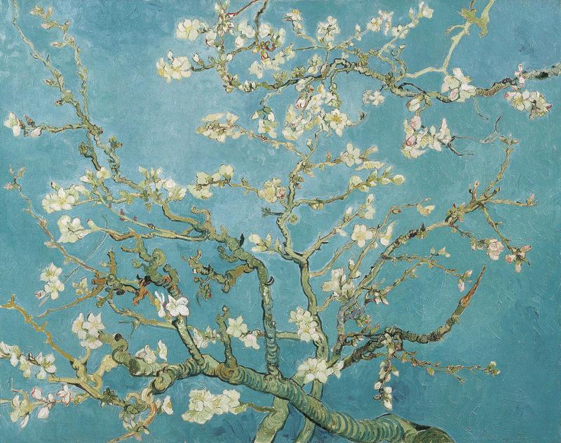 ゴッホ「花咲くアーモンドの木の枝」
